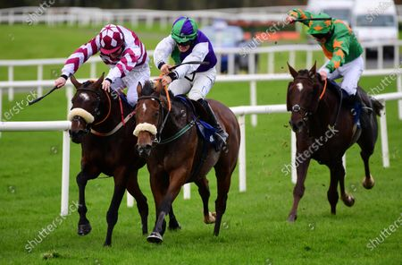 Editorial image of Horse Racing - 17 Oct 2020