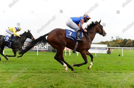 NAAS 18-October-2020. ELIZABETHAN and Seamie Heffernan win for owners Tabor Smith & Magnier and trainer Aidan O'Brien.