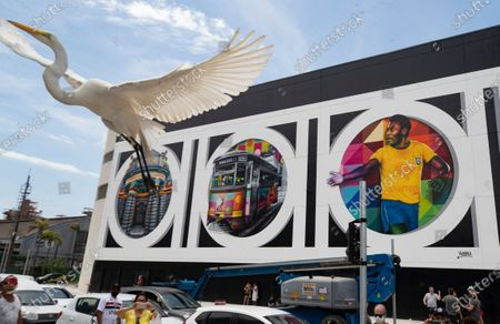 Bird flies and people walk past a mural created by Brazilian street artist Eduardo Kobra to pay homage to soccer legend Pele to mark his 80th birthday in the coastal city of Santos, Brazil, . Pele's birthday is Oct. 23