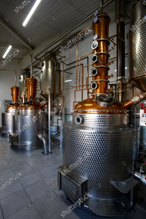 Editorial picture of First palinka distillery in Zakarpattia produces fruit spirits, Ukraine - 19 Oct 2020