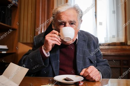 Stock Image of Former Uruguayan president Jose Mujica attends a meeting with Efe from his office, in Montevideo, Uruguay, 20 October 2020. The former presidents of Uruguay Julio Maria Sanguinetti (1985-1990 and 1995-2000) and Jose Mujica (2010-2015) participate in an extraordinary session in which both will resign their senatorial seats. 'Because the virus threw me out, because I am 85 years old and have an immune disease. I love politics, but I love not dying even more,' Mujica reasoned to the journalists who questioned him about his withdrawal at the entrance to the Upper House. Sanguinetti and Mujica won their seats in the elections held in October 2019, but their advanced age (Sanguinetti is 84 and Mujica 85) has made them justify their absence from the rest of the legislative period, which ends in 2025.
