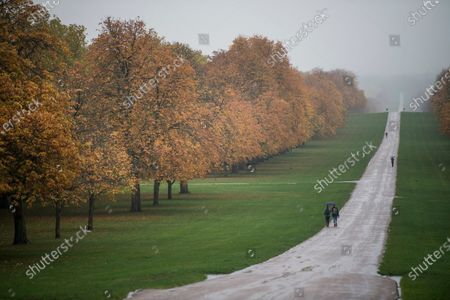 Stock Picture of Members of the public shelter underneath umbrellas, amongst autumnal colours, on the Long Walk in Windsor, Berkshire.