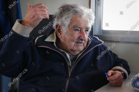 Former President of Uruguay Jose Mujica during an interview with Efe at his farm in Montevideo, Uruguay, 21 October 2020. Mujica resigned from the Senate on 20 October 2020, citing fear for his life due to the piblic health crisis caused by the coronavirus.