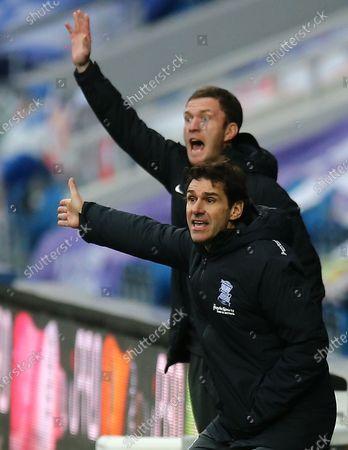 Aitor Karanka manager of Birmingham City reacts