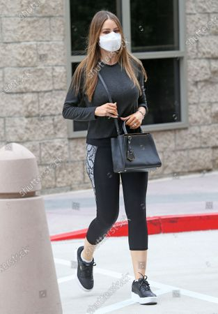 Editorial image of Sofia Vergara out and about, Los Angeles, USA - 22 Oct 2020