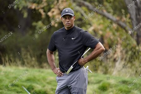 Tiger Woods waits on the 10th green during the first round of the Zozo Championship golf tournament, in Thousand Oaks, Calif