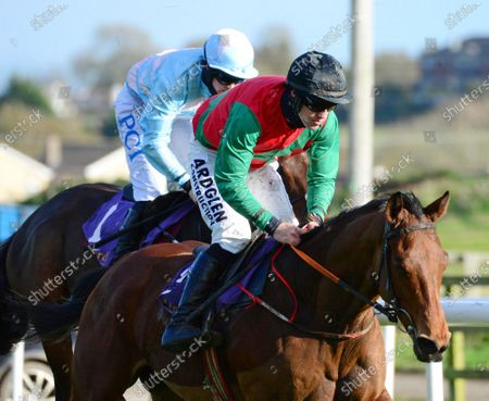 Wexford BUCK ROGERS and Brian Hayes win the Michael Moore Car Sales Maiden Hurdle. Healy Racing