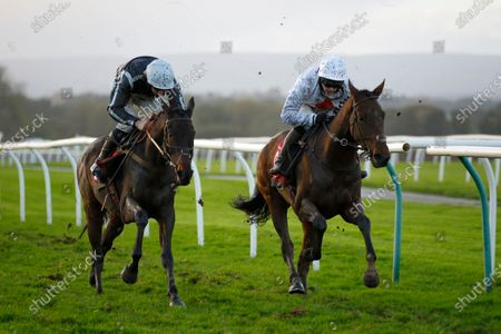 Stock Image of Pressure Sensitive and Jonjo O'Neill [right] just beats Mexico in the Oliver Greenall Standard Open National Flat Race at Bangor-on-Dee.