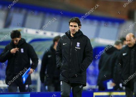 Birmingham City manager Aitor Karanka