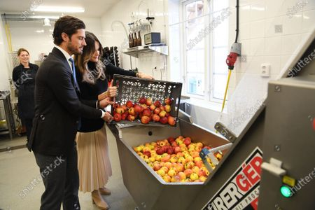 Stock Photo of Prince Carl Philip and Princess Sofia make apple juice during the visit to Kulinarika at Aplungen, a restaurant and vineyard south of Sunne, Sweden. The Prince Couple are spending the day in Varmland County to see how it has been affected by Covid-19.