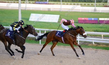 Editorial photo of Horse Racing - 28 Oct 2020