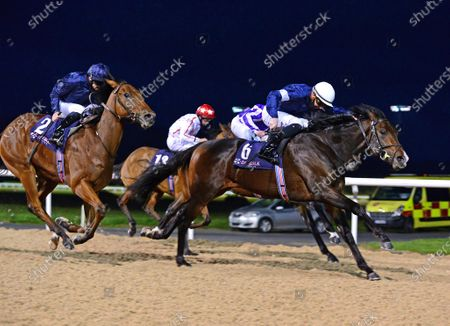 Editorial image of Horse Racing - 28 Oct 2020