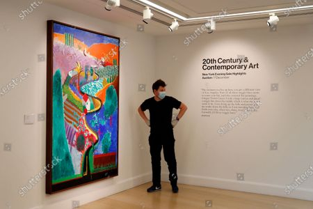 Member of staff poses for the media next to a painting by David Hockney entitled 'Nichols Canyon' at Phillips auction house in London, . The painting will be sold at auction on Dec. 7, in New York with an estimates value of US$ 35 million