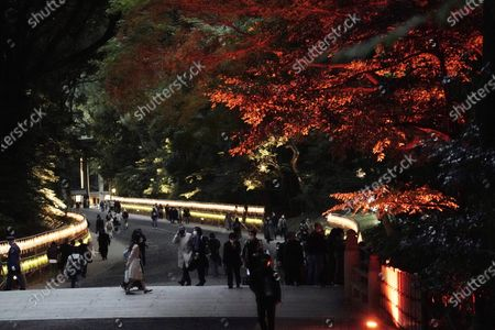 Thousands of lanterns and illuminated decoration are lit up to mark the 100th anniversary of the Meiji Jingu Shinto Shrine in Tokyo . Meiji Jingu, was built to pay tribute to the Emperor Meiji and Empress Shoken in 1920