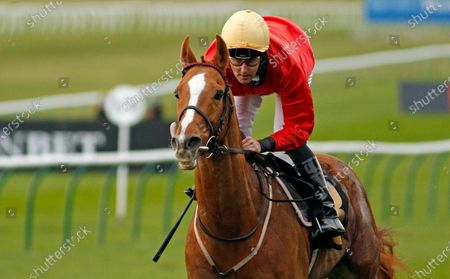 Stock Picture of AWAKE MY SOUL (Tom Queally) wins The Play 3-2-Win At Mansionbet Handicap Newmarket