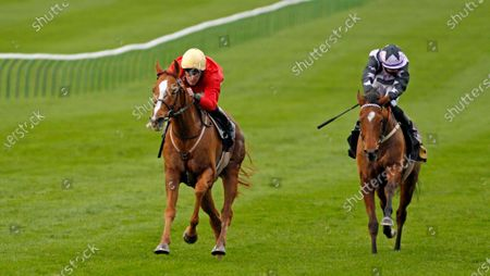 Editorial image of Horse Racing - 30 Oct 2020