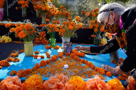 "Ofelia Esparza, 88, from East Los Angeles, arranges fresh marigolds, often called ""flowers of the dead,"" by a picture of late Los Angeles Lakers great Kobe Bryant left by members of the community, at an altar for Day of the Dead, titled ""2020 Memorial to Our Resilience,"" at Grand Park in Los Angeles, on"
