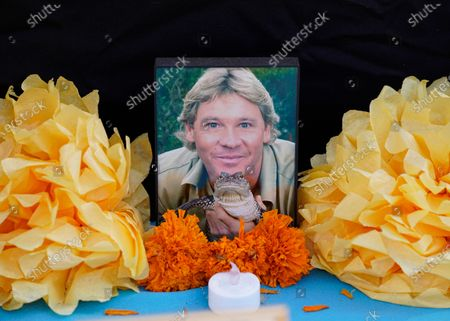 "Fresh and paper marigolds, sometimes called ""flowers of the dead,"" sit next to a picture of the late Steve Irwin, from the wildlife TV series, ""The Crocodile Hunter,"" left by members of the community, at an altar for Day of the Dead, titled ""2020 Memorial to Our Resilience,"" by artist Ofelia Esparza and her family at Grand Park in Los Angeles, . Day of the Dead, or Dia de los Muertos, the annual Mexican tradition of reminiscing about departed loved ones with colorful altars, or ofrendas, is typically celebrated Sunday through Monday 的库存图像"