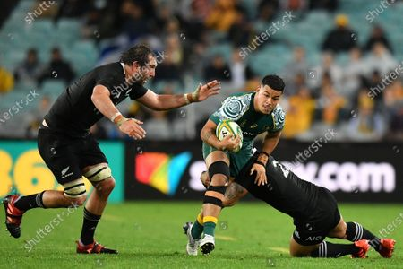 Stock Picture of Hunter Paisami (C) of the Wallabies is tackled by Dane Coles and Samuel Whitelock of the All Blacks during the third Bledisloe Cup Rugby match between the New Zealand All Blacks and the Australian Wallabies at ANZ Stadium in Sydney, Australia, 31 October 2020.