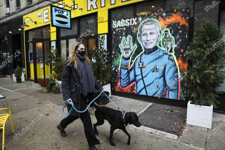 A woman wearing a face mask walks her dog past a mural of Anthony Fauci, director of the U.S. National Institute of Allergy and Infectious Disease, in New York, the United States, Oct. 30, 2020. The total number of COVID-19 cases in the United States surpassed 9 million on Friday, according to the Center for Systems Science and Engineering (CSSE) at Johns Hopkins University. U.S. COVID-19 case count rose to 9,007,298, with the national death toll reaching 229,293, as of 3:24 p.m. local time (1924 GMT), according to the CSSE.