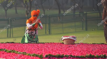Editorial photo of Priyanka Gandhi Pays Tribute To Indira Gandhi On Her Death Anniversary, New Delhi, Delhi, India - 31 Oct 2020