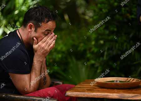 Stock Image of Anthony McPartlin