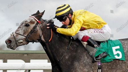 Stock Picture of PERFECT INCH (Oisin Murphy) wins The Unibet Breeders Backing Racing EBF Fillies Novice Stakes Kempton