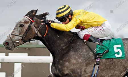 Editorial picture of Horse Racing - 02 Nov 2020