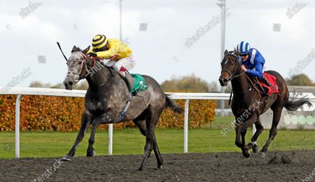 Editorial photo of Horse Racing - 02 Nov 2020