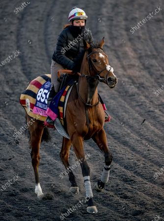 , 2020, Lexington, KY, USA: Nazuna, trained by trainer Roger Varian, exercises in preparation for the Breeders' Cup Juvenile Fillies Turf at Keeneland Racetrack in Lexington, Kentucky on , 2020. Scott Serio/Eclipse Sportswire/Breeders Cup/CSM
