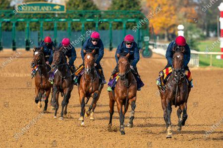 Editorial photo of Horse Racing - 05 Nov 2020