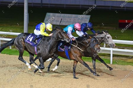 DUNDALK 6-November-2020. LOUGH DERG and Wayne Lordan (right) beats COLOUR SERGEANT (centre) and ZOZIMUS (left) for owners Mrs John Magnier, Michael Tabor & Derrick Smith and trainer Aidan O'Brien.