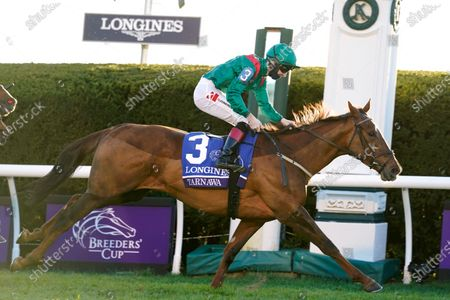 Colin Keane rides Tarnawa to win the Breeders' Cup Turf horse race at Keeneland Race Course, in Lexington, Ky