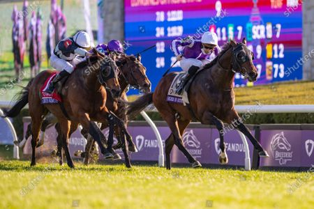 Stock Image of Order of Australia, with PC Boudot up, wins the Grade 1 Breeders' Cup Mile, with Circus Maximus (left) in 2nd place and Lope Y Fernandez (purple cap) in 3rd, all trained by Aidan O'Brien. Keeneland Racecourse in Lexington, KY, USA.