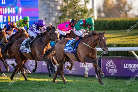 Tarnawa, with Colin Keane up, wins the Grade 1 Breeders' Cup Turf beats Magical (No 2) with Ryan Moore up at Keeneland Racecourse in Lexington, KY, USA.