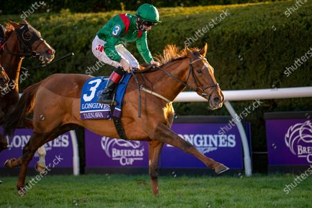 Tarnawa, with Colin Keane up, wins the Grade 1 Breeders' Cup Turf at Keeneland Racecourse in Lexington, KY, USA.