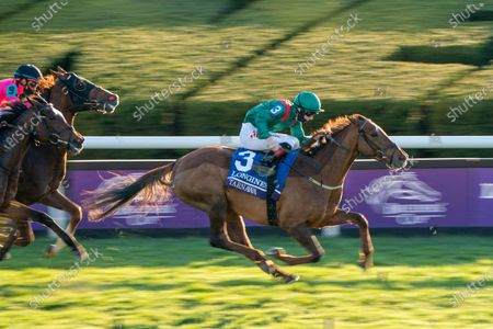 , 2020, Lexington, Kentucky, USA: Tarnawa, ridden by Colin Keane, wins the Longines Turfon Breeders†Cup Championship Saturday at Keeneland Race Course in Lexington, Kentucky on , 2020. Scott Serio/Breeders†Cup/Eclipse Sportswire/CSM