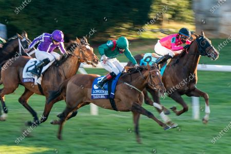 Stock Photo of , 2020, Lexington, Kentucky, USA: Tarnawa, ridden by Colin Keane, wins the Longines Turfon Breeders†Cup Championship Saturday at Keeneland Race Course in Lexington, Kentucky on , 2020. Scott Serio/Breeders†Cup/Eclipse Sportswire/CSM