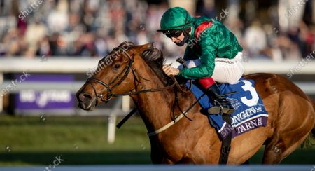 Stock Image of , 2020, Lexington, Kentucky, USA: Tarnawa, ridden by Colin Keane, wins the Longines Turf on Breeders†Cup Championship Saturday at Keeneland Race Course in Lexington, Kentucky on , 2020. Alex Evers/Breeders†Cup/Eclipse Sportswire/CSM