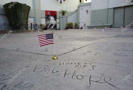 American flags are placed at the TCL Chinese Theatre on the hand and footprints of Hollywood stars including the late Bob Hope who served in the military, in Los Angeles