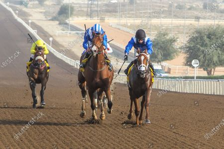 Editorial image of Horse Racing, Jebel Ali, Dubai, United Arab Emirates - 13 Nov 2020