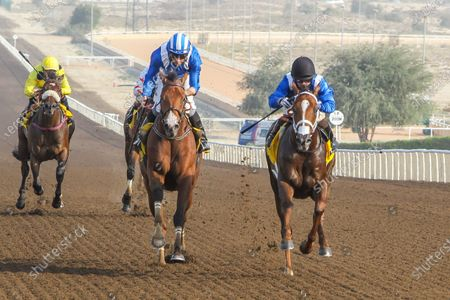 Stock Photo of GABR (GB) ridden by Sam Hitchcott wins the 8F Conditions Shadwell Handicap, race 4, at Jebel Ali, Dubai, UAE