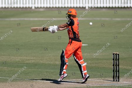 Sophie Devine of the Perth Scorchers edges the ball and is caught out by Alyssa Healy of the Sydney Sixers during the Women's Big Bash League cricket match between Perth Scorchers and Sydney Sixers