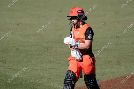 Stock Photo of Heather Graham of the Perth Scorchers walks off after being dismissed during the Women's Big Bash League cricket match between Perth Scorchers and Sydney Sixers