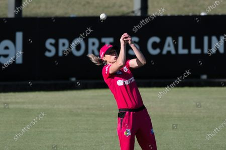 Stock Photo of Ellyse Perry of the Sydney Sixers drops a catch during the Women's Big Bash League cricket match between Perth Scorchers and Sydney Sixers