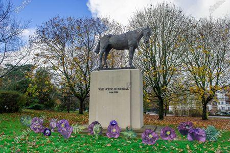 Editorial picture of Armistice Day, War Horse Memorial, Ascot, Berkshire, UK - 10 Nov 2020