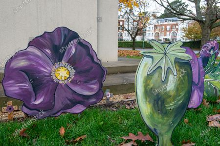 Stock Photo of A meadow of painted purple poppies by artist Jenna Fox have been left by the bronze scuplture of the War Horse Memorial in Ascot to mark Remembrance Sunday and Armistice Day 2020. Millions of horses, mules and donkey perished in the Great War. The bronze horse scuplture by Susan Leyland named Poppy, has a tear trickling from the horse's eye. People across the country will fall silent for two minutes at 11.00am on 11th November 2020 as they pay their respects to the war dead of World War I, World War II and more recent conflicts across the world