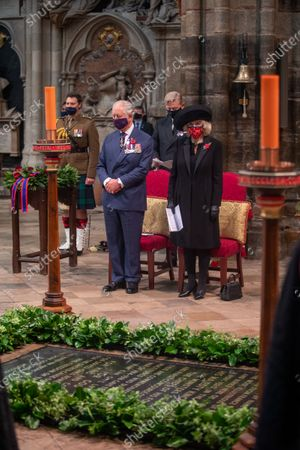 Editorial photo of Remembrance Day, London, UK - 11 Nov 2020