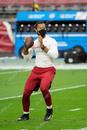 Editorial image of Dolphins Cardinals Football, Glendale, United States - 08 Nov 2020