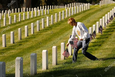 Editorial picture of Honor Veterans Day at Los Angeles National Cemetery, Los Angeles National Cemetery, Los Angeles, California, United States - 11 Nov 2020